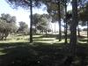 casa_rural_hoces_del_batanejo_entorno_026